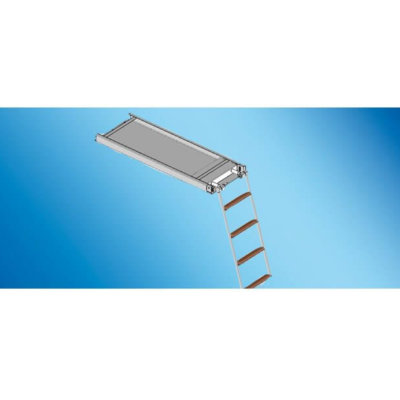 Opacmare Swimming Ladder